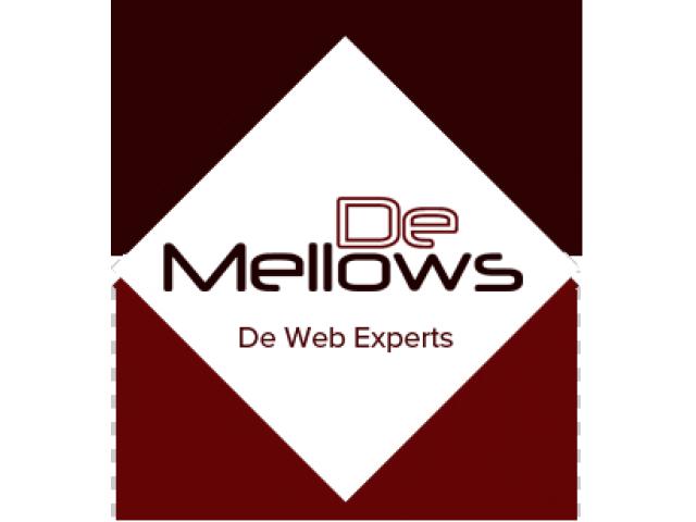 De Mellows Pte Ltd : Singapore's Preferred Digital Agency