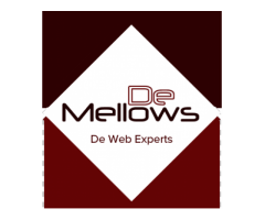 De Mellows Pte Ltd : Singapore's Preferred Digital Agency