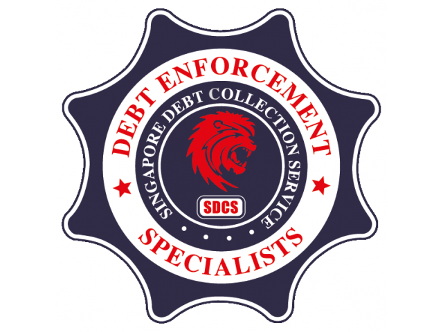 SDCS HOLDINGS PTE LTD ( Singapore Debt Collection Service LLP )