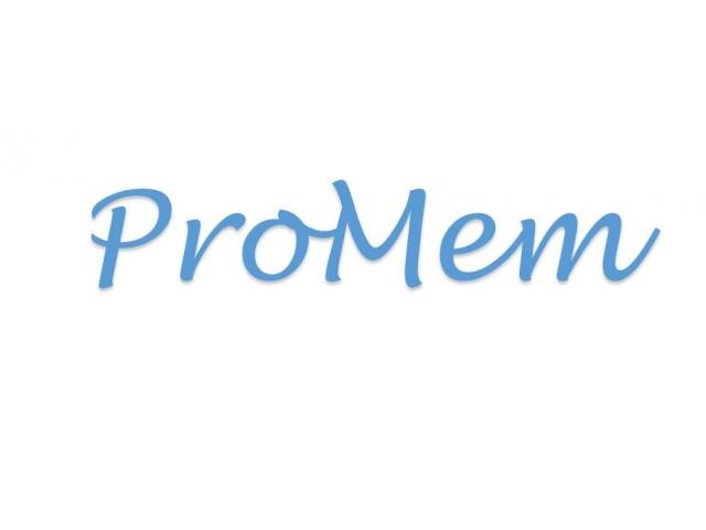 ProMem Pte Ltd
