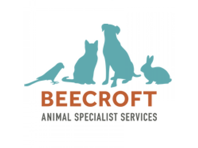 Beecroft Animal Surgical Specialists