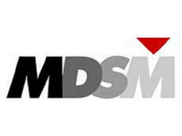 MDSM Consulting