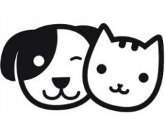Likeable Pets