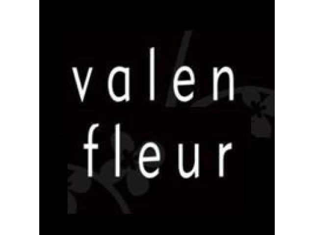 Valenfleur Pte Ltd