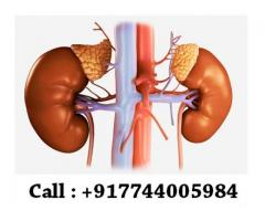 Cost of stem cell therapy for kidney failure in india